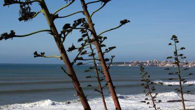 View of Cascais across bay from Praia das Avencas, Parede, Portugal