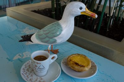 Seamus the Seagull with cup of coffee and pastel da nata pastry