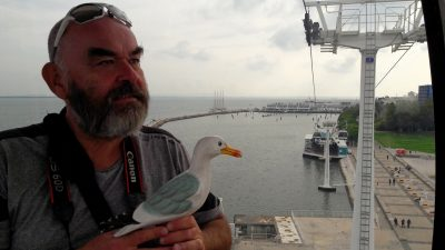 Seamus the Seagull in cable car in Lisbon with His Lordship