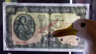 Seamus the Seagull with Irish 100 pound note in Money Museum Lisbon