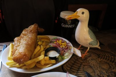 Seamus the Seagull standing on carved wooden table beside plate with battered cod and chips with sauce and salad, pint of Guinness in background, Malahide, County Dublin