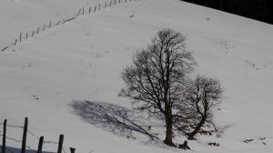 Almenland, Styria