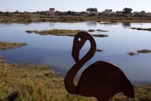 Caldeira do Moinho bird sanctuary, Setubal