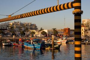 Fishing Harbour, Setubal