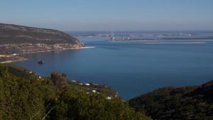 Sado Estuary